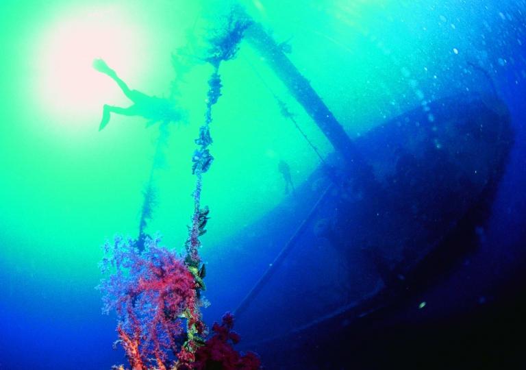 jordan_tours_underwater_315_20170524_1236735357